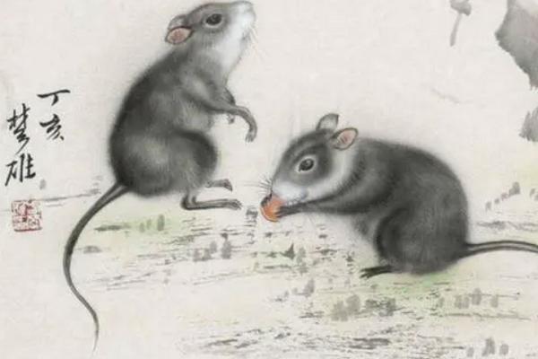 属鼠人的风水吉凶方位(把握好风水的关键)